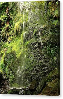 Waterfall Canvas Print by Svetlana Sewell