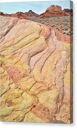Canvas Print featuring the photograph Waves Of Color In Valley Of Fire by Ray Mathis