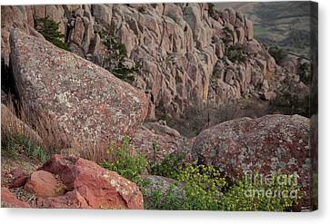 Canvas Print featuring the photograph Wichita Mountains by Iris Greenwell