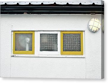 Windows Canvas Print by Tom Gowanlock