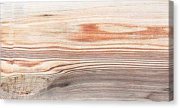 Wood Texture Canvas Print by Tom Gowanlock