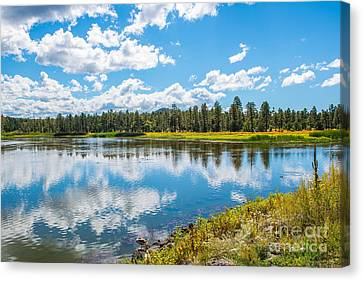 Canvas Print featuring the photograph Woodland Lake Pinetop, Arizona by Michael Moriarty