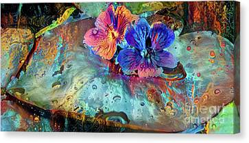 Jeweled Water Lilies Canvas Print by Amy Cicconi
