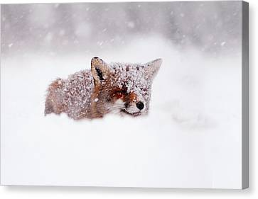50 Shades Of White And A Touch Of Red Canvas Print by Roeselien Raimond