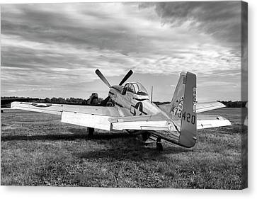 Canvas Print featuring the photograph 51 Shades Of Grey by Peter Chilelli