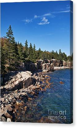 Acadia National Park Canvas Print by John Greim