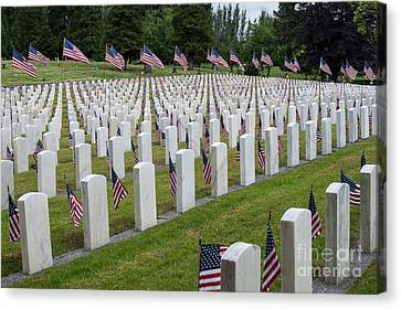 American Flags At Cemetery Canvas Print by Jim Corwin