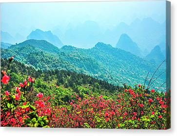 Blossoming Azalea And Mountain Scenery Canvas Print by Carl Ning