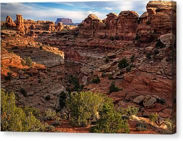 Canyonlands National Park Utah Canvas Print by Utah Images