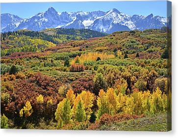 Canvas Print featuring the photograph Dallas Divide by Ray Mathis