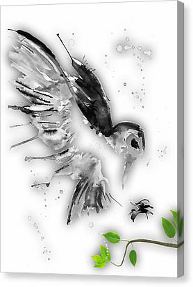 Owl Collection Canvas Print by Marvin Blaine