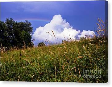 Rainbow Over Pasture Field Canvas Print by Thomas R Fletcher