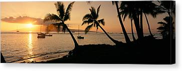 Silhouette Of Palm Trees At Dusk Canvas Print by Panoramic Images