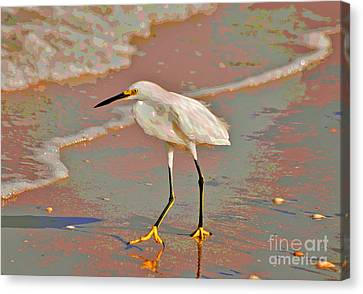 Canvas Print featuring the photograph 6- Snowy Egret by Joseph Keane