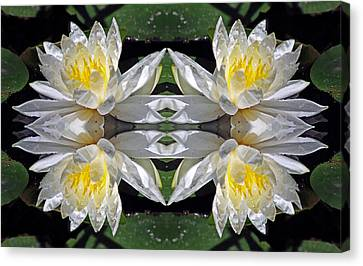 White Lotus Mandala Canvas Print by Daniel Unfried