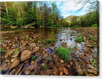 Williams River Canvas Print - Williams River Spring by Thomas R Fletcher