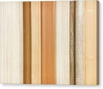 Wood Panels  Canvas Print by Tom Gowanlock