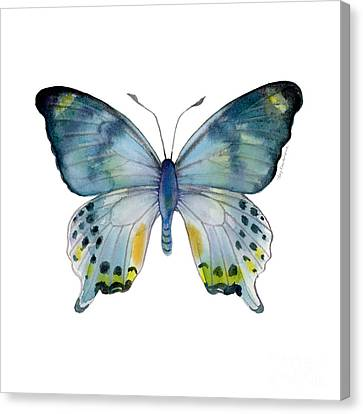 68 Laglaizei Butterfly Canvas Print