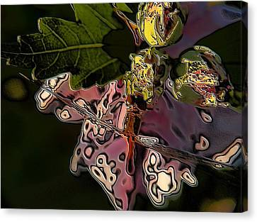 Abstract Dragonfly Canvas Print by Belinda Cox