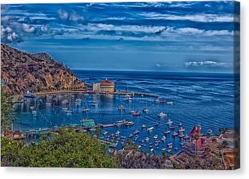 Catalina Island Harbor Canvas Print