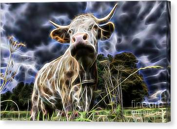 Cow  Canvas Print by Marvin Blaine