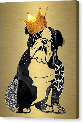 English Bulldog Collection Canvas Print by Marvin Blaine