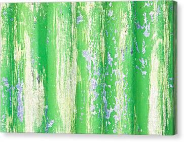 Green Metal Canvas Print by Tom Gowanlock