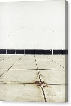 Old Tiles Canvas Print by Tom Gowanlock