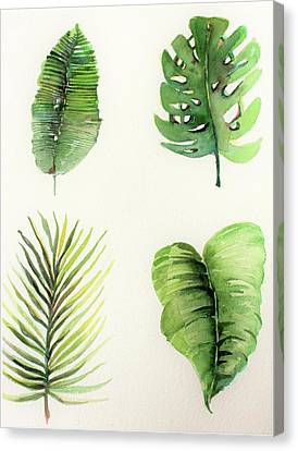 Philodendron Canvas Print - Palms by Mindy Newman