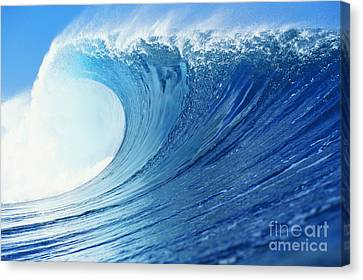 Perfect Wave At Pipeline Canvas Print by Vince Cavataio - Printscapes