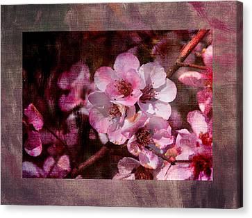Quince Art Canvas Print