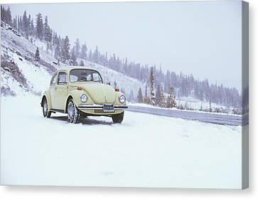 71 Vw Bug Canvas Print