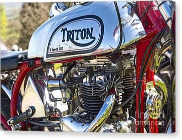 750 Triton Canvas Print