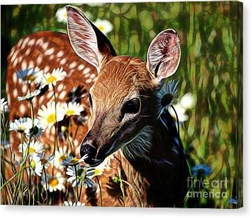 Animal Art Canvas Print - Deer by Marvin Blaine