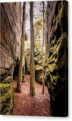 Canvas Print featuring the photograph Great Virginia Channels  by Kevin Blackburn