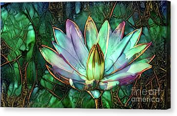 Aquatic Plant Canvas Print - Jeweled Water Lilies by Amy Cicconi
