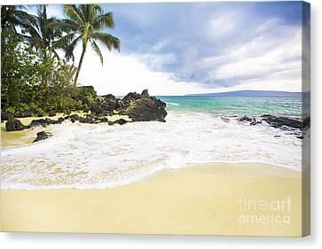 Paako Beach Makena Maui Hawaii Canvas Print by Sharon Mau