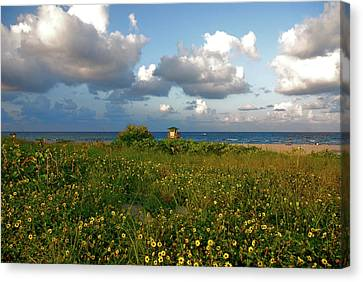 Canvas Print featuring the photograph 8- Sunflowers In Paradise by Joseph Keane