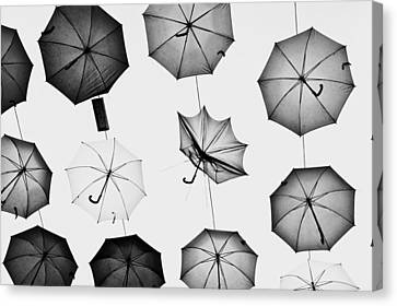 Umbrellas Canvas Print by Tom Gowanlock