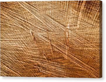 Wood Texture Canvas Print by Tom Gowanlock