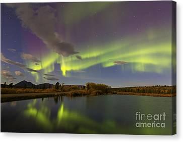 Aurora Borealis With Moonlight At Fish Canvas Print