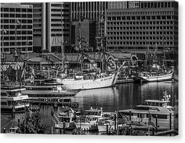 Baltimore Inner Harbor Canvas Print by Jim Archer
