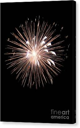 Fireworks Canvas Print by Brent Parks