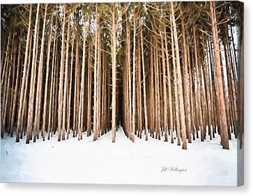 Michigan Winter Canvas Print by Jill Wellington