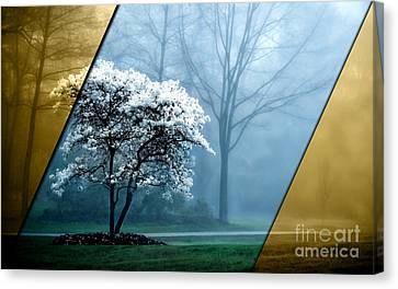 Nature Collection Canvas Print by Marvin Blaine