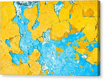 Peeling Paint Canvas Print by Tom Gowanlock