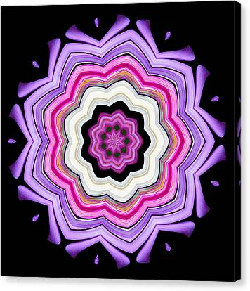 Canvas Print featuring the photograph 9-petaled Violet by Baha'i Writings As Art
