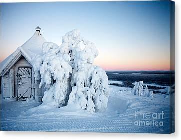 Winter In Lapland Finland Canvas Print