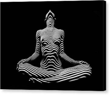 9934-dja Lotus Position In Zebra Stripes  Canvas Print