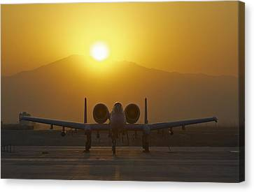 A-10 Warthog Canvas Print by Tim Grams